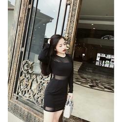 Đầm đen phối lưới tay dài - y hình