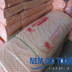 nệm cao su Van Thành Standard 100x200x5cm