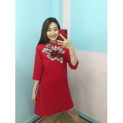 Đầm suông hình shop chụp