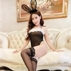 Cosplay Thỏ Bunny