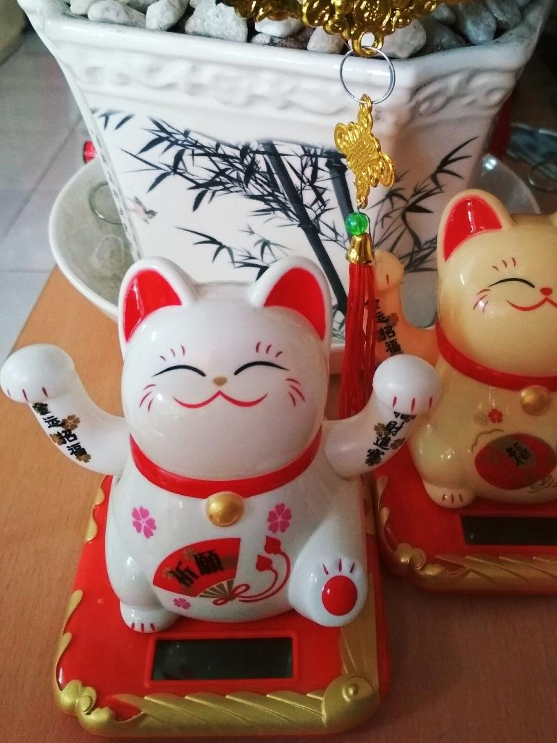 Mèo Thần Tài Vẫy Cả 2 Tay 4