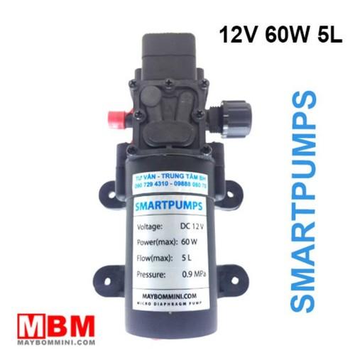 Bơm Nước Mini Áp Lực 12V 60W 5L – SmartPumpus