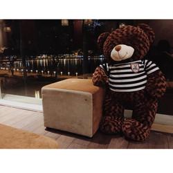 Gấu bông Teddy khổ 1m2 giá rẻ