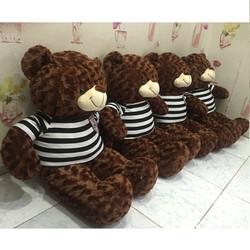 Gấu bông Teddy khổ 1m giá rẻ