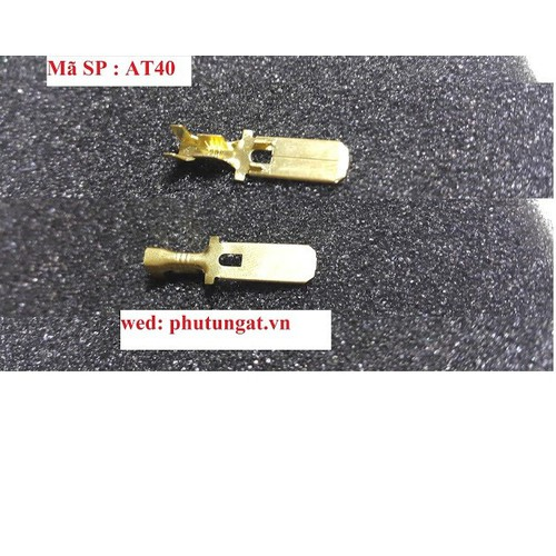 Cos lưỡi 6,3 đực có lỗ - AT40  - 1 bịch 50 cái - 10573589 , 8676850 , 15_8676850 , 35000 , Cos-luoi-63-duc-co-lo-AT40-1-bich-50-cai-15_8676850 , sendo.vn , Cos lưỡi 6,3 đực có lỗ - AT40  - 1 bịch 50 cái