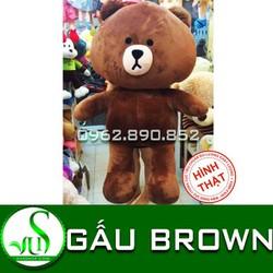 Gấu bông gấu Brown nhồi bông siêu mịn bự khổ 1m6