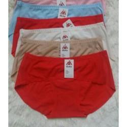 quần lót nữ dạng đúc chuyên sỉ 10 chiếc