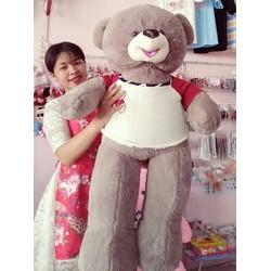 Gấu Bông Teddy 1m2 Lông Xám