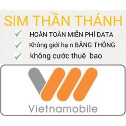 Thánh Sim vietnamobile