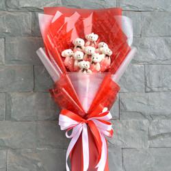 Hoa gấu bông đỏ rực rỡ