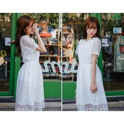 Váy ren nữ Hàn Quốc hàng nhập khẩu chất lượng cao