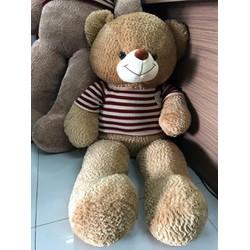 RẺ NHẤT - Gấu Teddy lông xù áo len khổ m4 - Gấu bông Teddy siêu hot