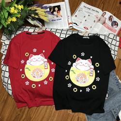áo thun mèo tết