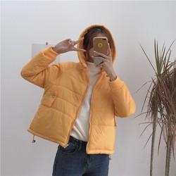 Áo khoác phao thời trang Hàn Quốc-5384-Hàng Nhập