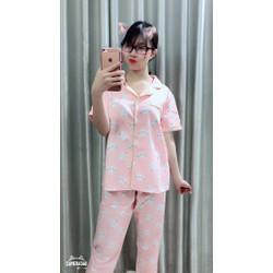 Bộ ngủ Pyjama Thái tay ngắn quần dài