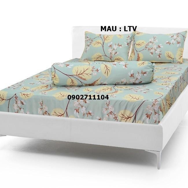 bộ ga cotton caro xanh -  crx01 2