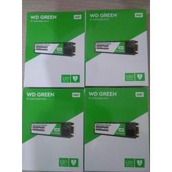 SSD M2 SATA WD GREEN - 120GB