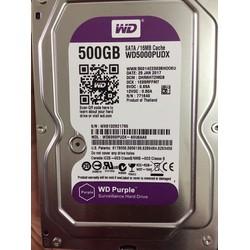 Ổ cứng lưu trữ Camera 500Gb WD Purple Tím