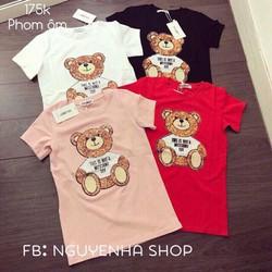 áo thun hình gấu 4 màu như hình