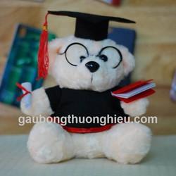 Gấu bông tốt nghiệp giá rẻ - món quà ý nghĩa trong ngày tốt nghiệp