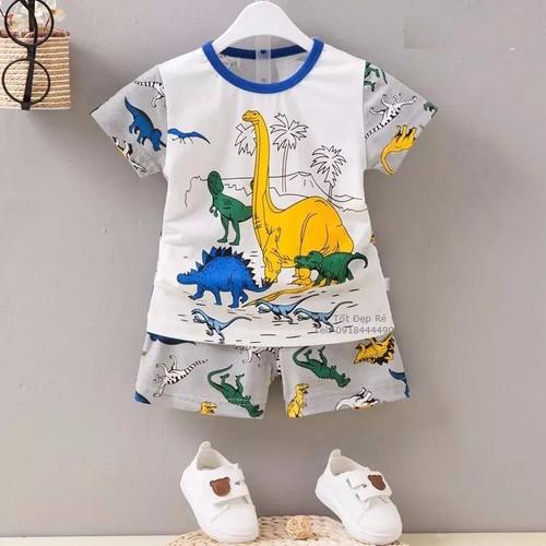 Bộ thun cộc tay chất đẹp in hình gia đình khủng long