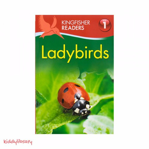 Sách tập đọc tiếng Anh hay Kingfisher Readers Ladybirds