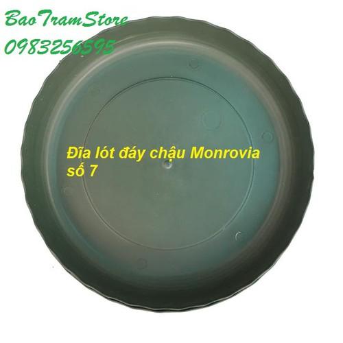 Đĩa lót đáy chậu nhựa trồng cây cao cấp Monrovia cỡ số 7