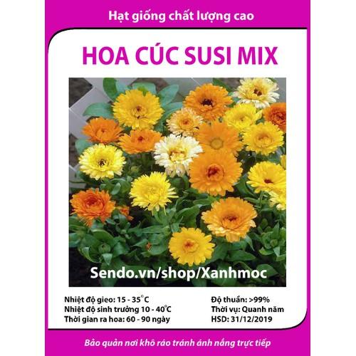 Hạt giống hoa Cúc susi mix - 5313009 , 8836123 , 15_8836123 , 12000 , Hat-giong-hoa-Cuc-susi-mix-15_8836123 , sendo.vn , Hạt giống hoa Cúc susi mix