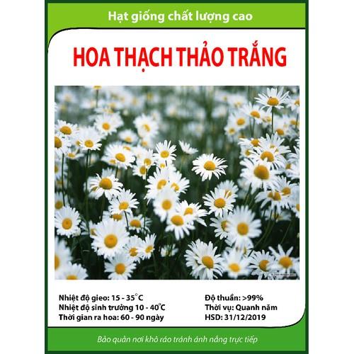 Hạt giống hoa Thạch thảo trắng - 5320728 , 8853814 , 15_8853814 , 14000 , Hat-giong-hoa-Thach-thao-trang-15_8853814 , sendo.vn , Hạt giống hoa Thạch thảo trắng