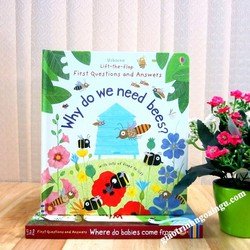 Sách Usborne Lift-The-Flap First Q and A : Why Do We Need Bees