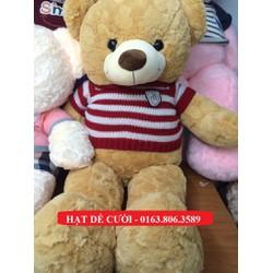 Gấu Bông Teddy Vàng Áo Sọc Đỏ