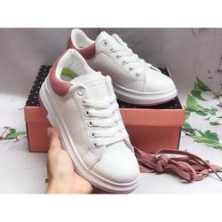 Giày bata cao cấp nữ
