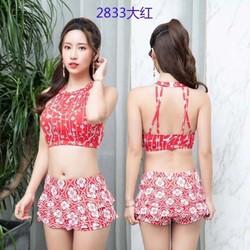 CHUYÊN SỈ: Bộ đồ bơi, bikini Quảng Châu cao cấp có đệm ngực