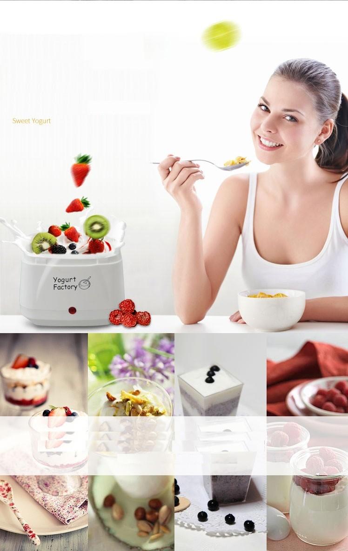 Máy làm sữa chua nội địa Nhật Factory Yogurt 3