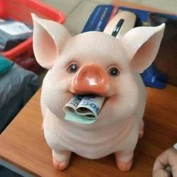 Lợn tiết kiệm