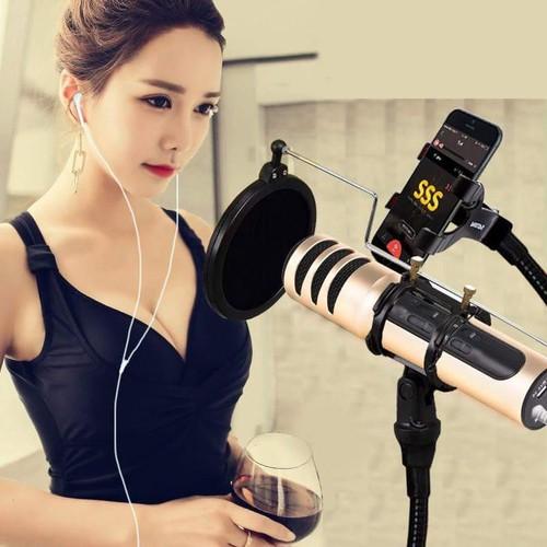 Bộ Micro Karaoke và Likestream Mini