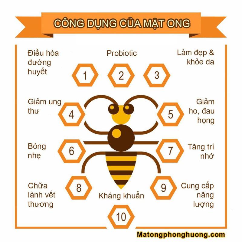 Mật ong hoa vải 500ml - Đảm bảo mật ong nguyên chất 2