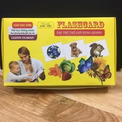 bộ thẻ học song ngữ flash card dạy trẻ thế giới xung quanh