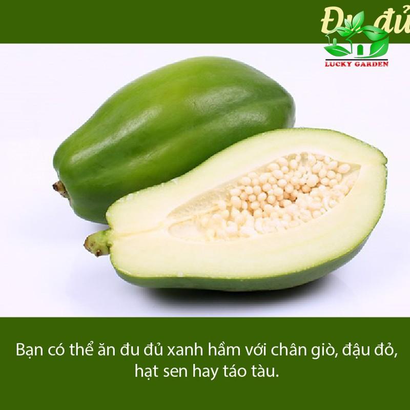 Hạt giống Đu Đủ lùn siêu trái - 3 hạt 7