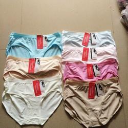 CHUYÊN SỈ: 10 quần lót cotton sợi tre hàng Việt Nam béo big size