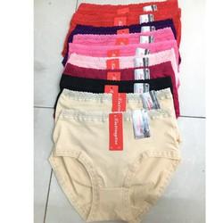 CHUYÊN SỈ: 10 quần lót cotton Việt Nam big size 50-75kg