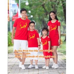 Áo Váy Gia Đình Cao Cấp AV-CC0408