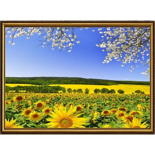 Tranh dán tường 3D VTC cánh đồng hoa hướng dương TN0200K - 5723706 , 9695561 , 15_9695561 , 329000 , Tranh-dan-tuong-3D-VTC-canh-dong-hoa-huong-duong-TN0200K-15_9695561 , sendo.vn , Tranh dán tường 3D VTC cánh đồng hoa hướng dương TN0200K