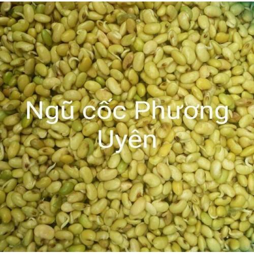 Bột mầm đậu nành nguyên xơ Phương Uyên
