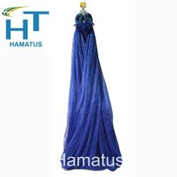 Võng lưới bó đầu Hamatus
