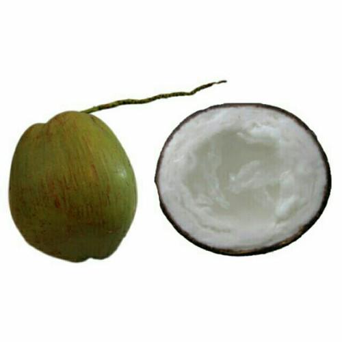 Dừa Sáp loại 3 Đặc Sản Cầu Kè