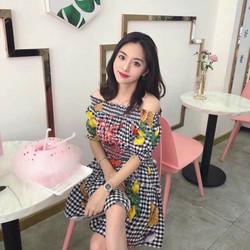 Đầm xòe bẹt vai in hoa 3d- hàng thiết kế