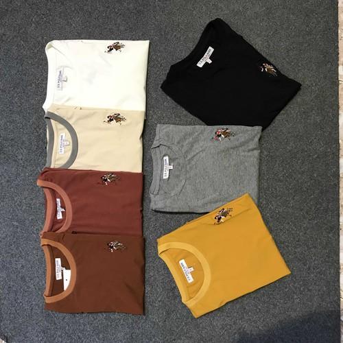combo 5 áo phông nam cotton cao cấp chọn màu