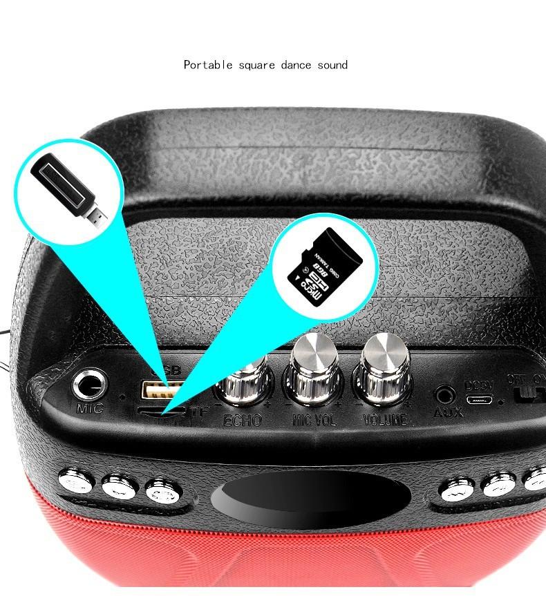 Loa kẹo kéo Bluetooth Echo PKCB-610 cắm Micro thẻ nhớ USB Điện thoại 6