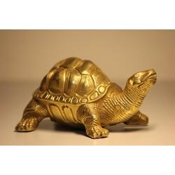 Tượng Rùa Đồng Phong Thủy - Quà tặng độc đáo